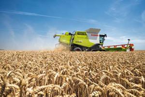Москва делает ставку на сельское хозяйство