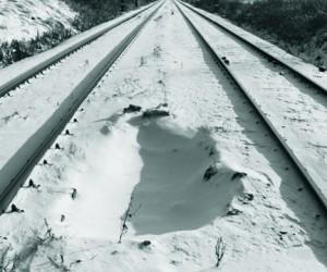 Сибиряк, выпавший из скорого поезда, бежал 7 км до станции в тапках и футболке