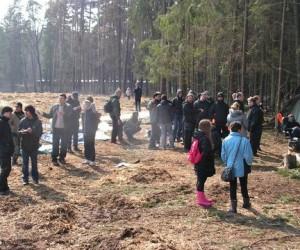 Теперь деревья в Цаговском лесу «валит ветер»
