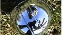 Правозащитников, играющих в петанк, задержали по подозрению в наркомании