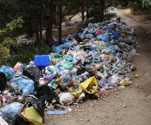 В Подмосковье за 3 месяца выписано 7,5 млн руб. штрафов за мусор