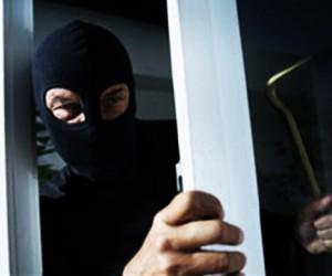 За «дачный сезон» число краж в столице увеличилось на 30%