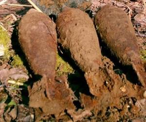 В Новой Москве найдено несколько десятков снарядов времен ВОВ