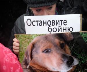 В Москве прошёл митинг против живодёров