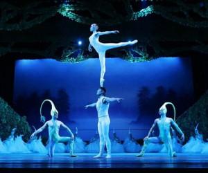 Акробатический балет из Шанхая везёт в Москву шоу «Лебединое озеро».