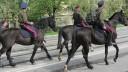 Столичные улицы начинает патрулировать «казачья полиция»