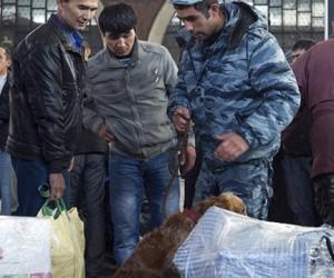 Полиция задержала таджика, везущего в Москву 13 кг героина