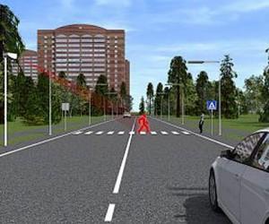 По «зебрам» Москвы могут пустить 3D-пешеходов