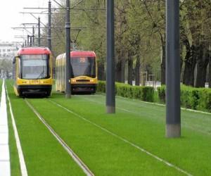 Трамвайные пути Москвы собираются засеять газоном