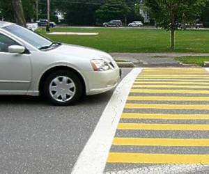 В Подмосковье нарисуют желтые зебры