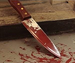 Мужчина из Подмосковья зарезал жену, пытался сделать себе харакири, а затем побежал голый к родителям