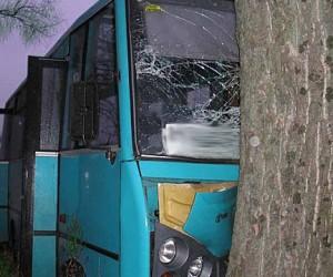 Трое приезжих угнали в Москве автобус и разбили его