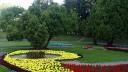 Садовое кольцо засадят фруктовыми деревьями