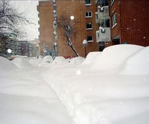 Мигранты бегут из столицы: кто будет убирать снег зимой???