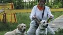 Владельцев животных в Москве могут обложить налогом