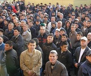 В январе заработает подмосковный центр содержания мигрантов