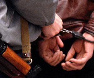 В Подольске поймали двоих убийц, грабивших под видом продавцов картофеля
