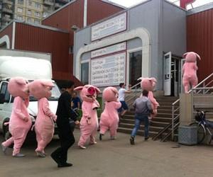Власти закрыли столичный рынок «Москворецкое», где были избиты волонтёры