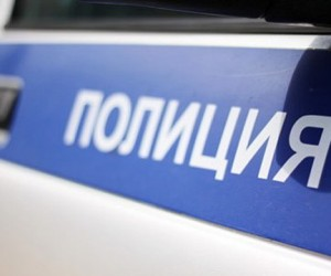 В подмосковном городе Коломна найдены обглоданные животными фрагменты женского тела