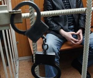 Фельдшер из Москвы обвиняется в развращении через Скайп восемнадцати детей