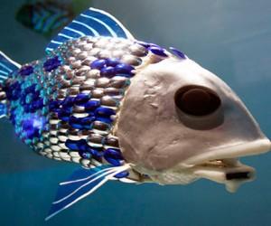 Российские ученые хотят создать робота-рыбу