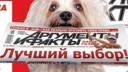 Московское правительство хочет купить «Аргументы и факты»