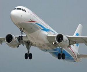 В самолёте Омск-Москва умерла маленькая девочка