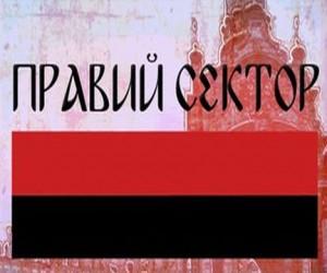 «Правый сектор» собирается в Москву