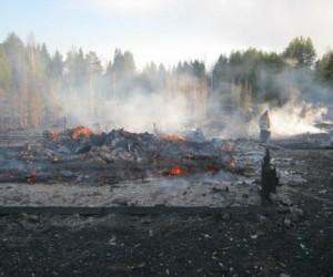 До Москвы может добраться дым от лесных пожаров