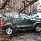 В столице ураган стал причиной падения десятков деревьев