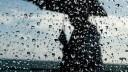 В День Победы в Москве будут бесплатно раздавать дождевики