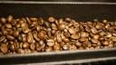 В столице обнаружили и изъяли 20 тонн поддельного кофе