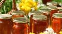 В Коломенском можно будет попробовать редкие сорта меда