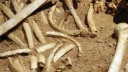 Старые человеческие кости нашли в центре столицы