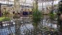 Самая высокая оранжерея откроется в Москве